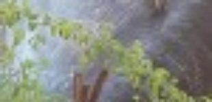 В Днепре водопроводную трубу «залатали» ножками от стула