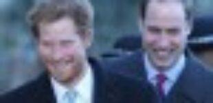 В СМИ появилась информация, что принц Гарри и Уильям помирились