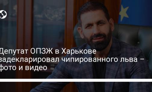Депутат ОПЗЖ в Харькове задекларировал чипированного льва – фото и видео