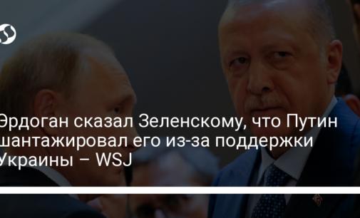 Эрдоган сказал Зеленскому, что Путин шантажировал его из-за поддержки Украины – WSJ