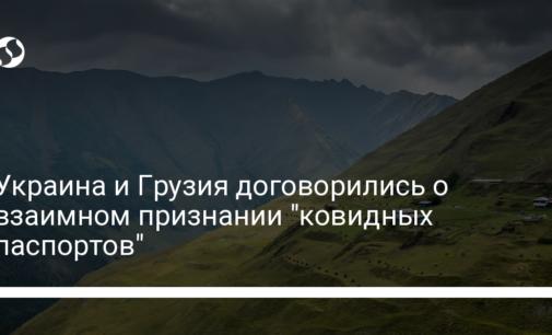 """Украина и Грузия договорились о взаимном признании """"ковидных паспортов"""""""