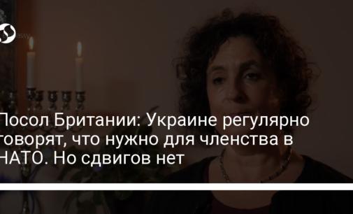 Посол Британии: Украине регулярно говорят, что нужно для членства в НАТО. Но сдвигов нет