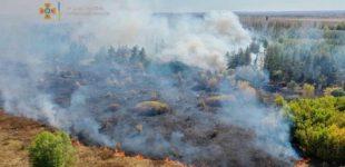 В Харьковской области — чрезвычайный уровень пожарной опасности. Что запрещено для населения