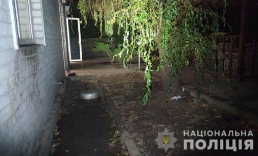 Гибель пенсионерки от укусов собак в Харькове: в полиции рассказали подробности несчастного случая, — ФОТО