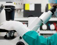 Защитные антитела сформировались в 100% случаев: днепрянам на заметку об эффективности вакцины против COVID-19