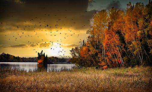 Погода в Киеве сегодня: прогноз на 21 октября